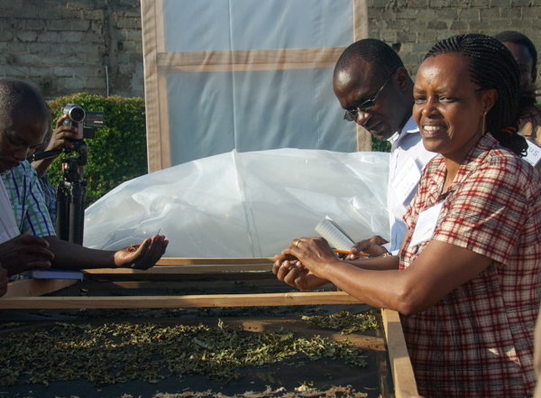 Odette Ngulu demonstrates a solar dryer dehydrating carrots and sweet-potato leaves for a group of agricultural workers from around Africa. Credit: Rachel Cernansky.