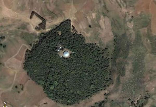 Debresena church forest in South Gondar, Ethiopia. Photo courtesy of Google earth.