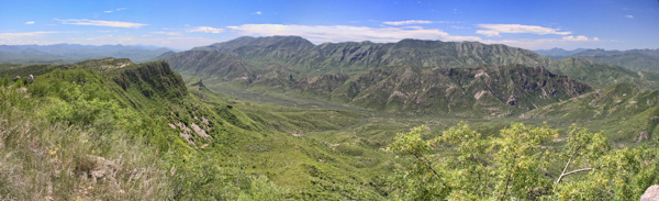 A view of the 5,000-acre Bábaco ranch, the purchase of which was supported by the Quick Response Biodiversity Fund to expand the Northern Jaguar Reserve in Sonora, Mexico. Photo by Miguel Gomez.