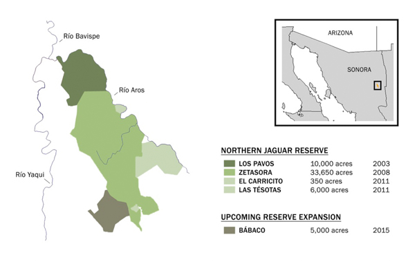A map shows the location and extent of the Northern Jaguar Reserve in Sonora, Mexico, along with the recent addition of the Bábaco ranch. Map credit: Northern Jaguar Project / Naturalia.