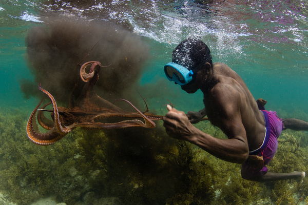 A fisherman spears an octopus in southwestern Madagascar. Photo copyright: Garth Cripps / Blue Ventures 2015.