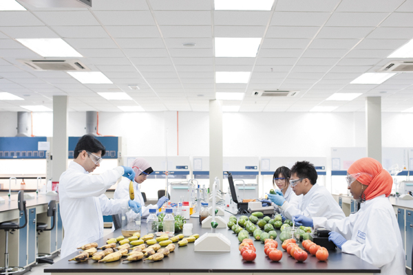 Researchers at the Center of Excellence for Post-harvest Biotechnology (CEPB) in Malaysia test a preservative coating made out of gum arabic that they hope will help reduce food waste in developing nations. Photo by: CEPB.