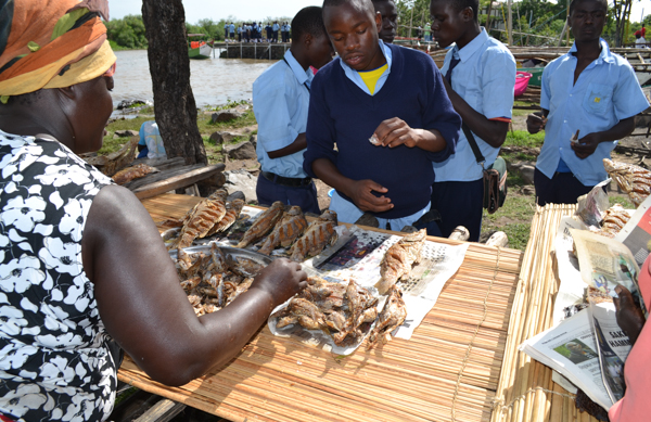 Students buy a snack of juvenile Nile perch from a kiosk at Dunga beach in Kisumu, Kenya. An estimated 5,000 people visit the beach daily to eat fish and view the lake. Photo credit: Isaiah Esipisu.