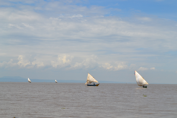 Fishing vessels ply Lake Victoria. Photo credit: Isaiah Esipisu.