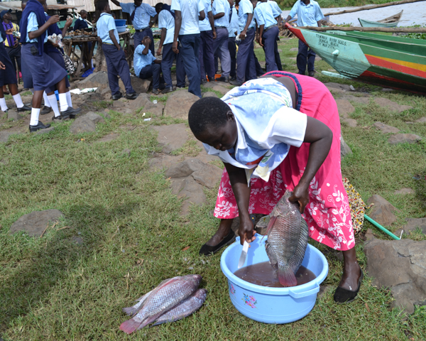 A woman prepares fish at busy Dunga Beach. Photo credit: Isaiah Esipisu.