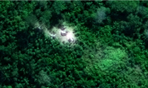 Satellite image of clearing and houses for a section of site F2 that was monitored during the study.
