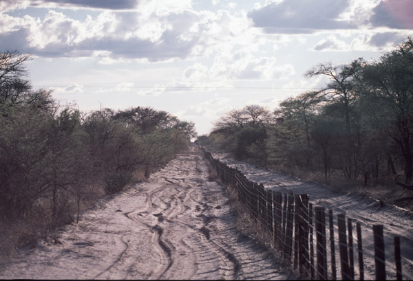 The Okavango veterinary fence in Botswana. Photo by Mark Johnstad.