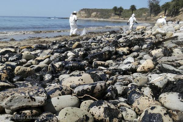Clean-up workers at work on Refugio State Beach on Wednesday, May 20, 2015. Photo credit: Jonathan Alcorn/Greenpeace.
