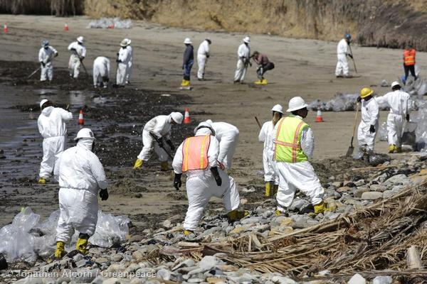 Crews begin cleaning Refugio State Beach on Wednesday, May 20, 2015. Photo credit: Jonathan Alcorn/Greenpeace.